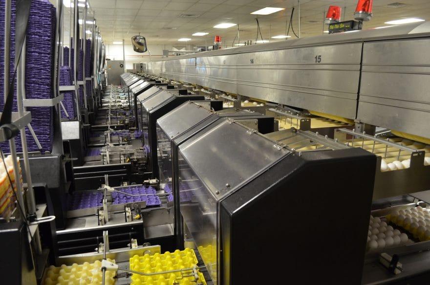 Cal-Maine Foods, Inc.